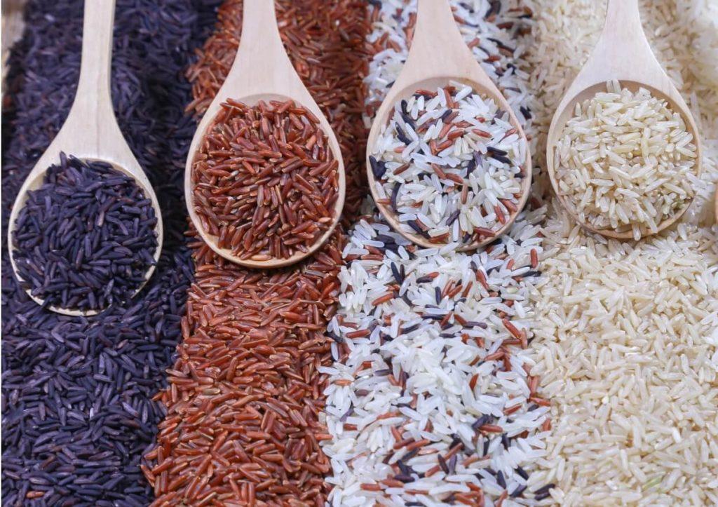 rice varieties- different rice types-Pristine Organics
