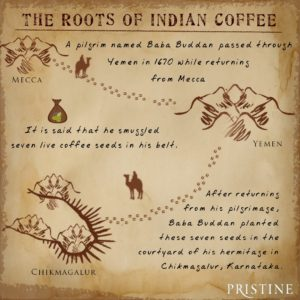 roots-of-indian-coffee-pristine-deccan-gold