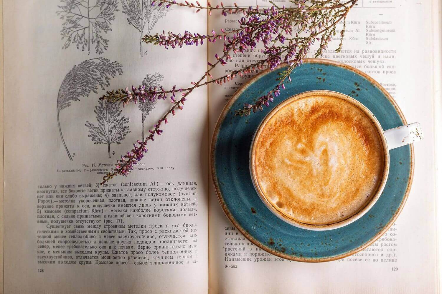 how-you-like-your-coffee-says-lot-about-you-pristine-organicscoffee-personalities-pristine-organics