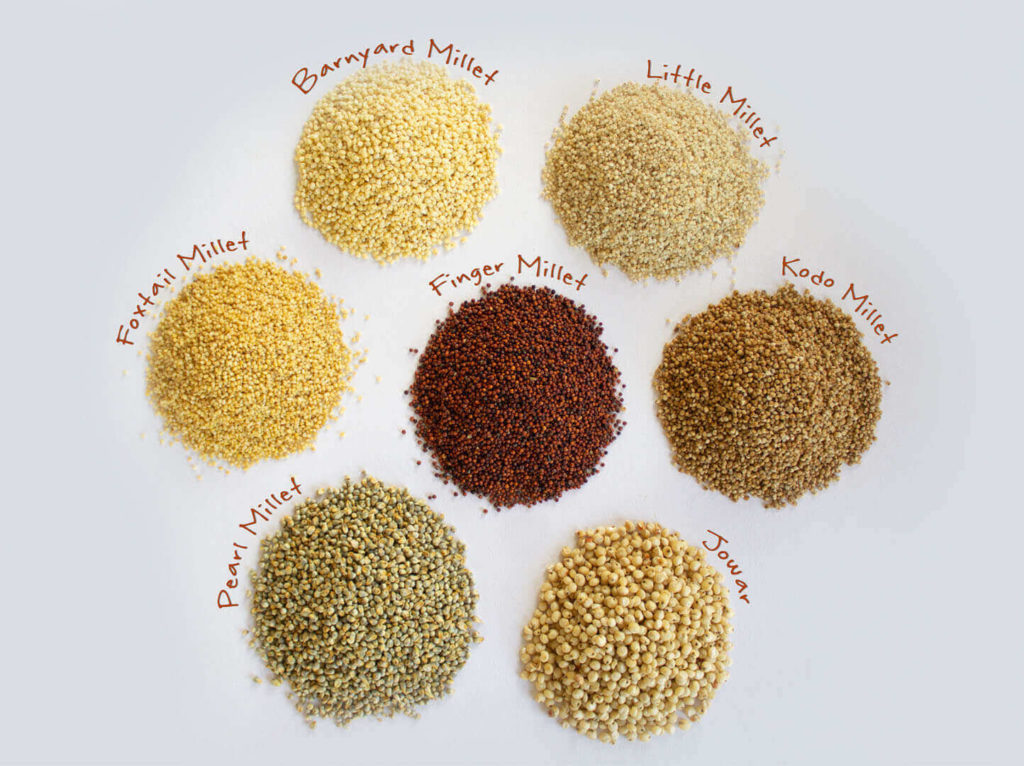 Millet – Ancient grains for a healthier future