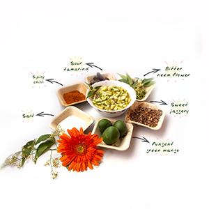 Ugadi-Pacchadi-pristine-Organics